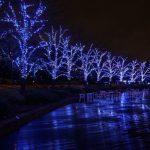 クリスマスデートはやっぱりイルミネーション!東京で行くならココ!