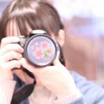 桜の写真 横浜ならおすすめはココ!江川せせらぎ緑道での桜の上手な撮り方は