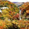 華厳の滝の紅葉の見頃は?所要時間や合わせて行きたい周辺の滝情報