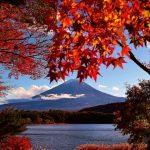河口湖の紅葉の見頃はいつ?絶対行きたいおすすめスポットご紹介