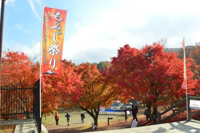 kawaguchiko-koyomatsuri