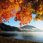 中禅寺湖の紅葉は渋滞回避で行く!ランチや日帰り温泉など満喫情報