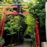 熱海 来宮神社への行き方は?併せて行きたい周辺の観光スポット紹介