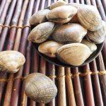 あさりの砂抜きがしっかりできるやり方と殻の洗い方