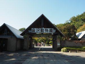 kanazawa-zoo