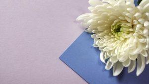 喪中はがきを年明けに出すのはOK?年賀状が届いたら返信はどうする?