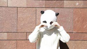 マスカラでパンダ目にならない!涙で落ちたマスカラでクマを作らないおすすめは?